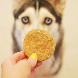 Peanut Butter & Oats Doggy Treats