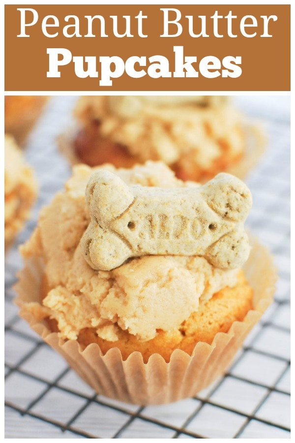 Peanut Butter Pupcakes - your pup deserves a treat! Dog-friendly peanut butter carrot cupcakes with a peanut butter frosting and a bone on top!
