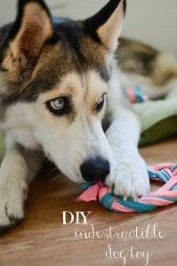 DIY Indestructible Dog Toy