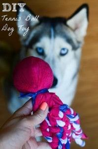 DIY Tennis Ball Dog Toy