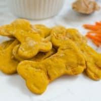 Homemade Pumpkin Carrot Dog Treats