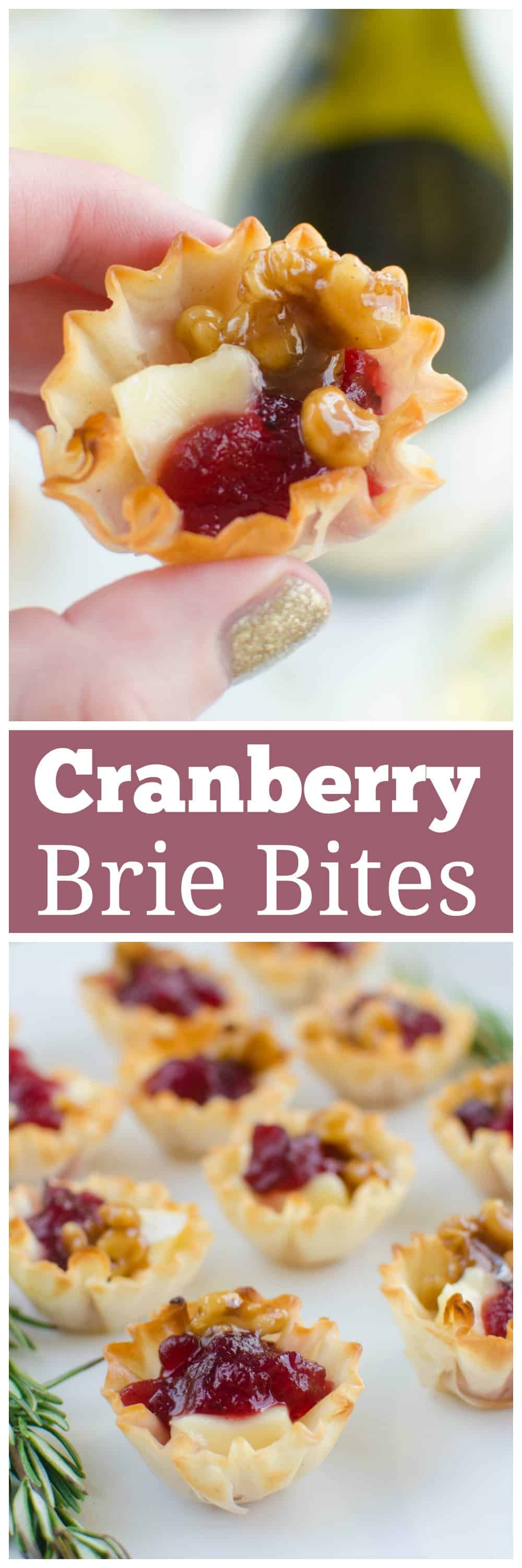 Cranberry Brie Bites - a quick and easy holiday appetizer! Melted brie and cranberry sauce in crisp phyllo cups with candied walnuts on top!