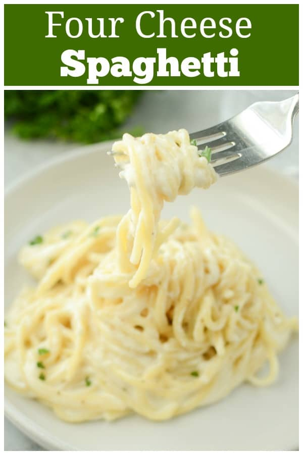 Four Cheese Spaghetti - easy 30 minute dinner recipe! Spaghetti with a delicious garlicky cheese sauce made with 4 cheeses. A perfect meatless meal or add grilled chicken!